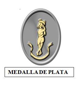 Medalla de Plata de la Corporación